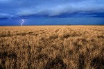 Lightning storm over Great Plains grassland of Baca County in Southeast Colorado, AGPix_0259