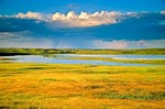 Rain storm over prairie with pothole ponds at Lostwood National Wildlife Refuge, Kenmare, North Dakota, AGPix_0265