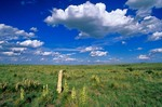 Santa Fe Trail marker in the Kiowa National Grassland, near Clayton, New Mexico, AGPix_0268