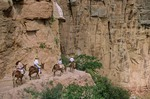 Mule riders on Bright Angel Trail, below South Rim of Grand Canyon, Grand Canyon National Park, Arizona, AGPix_0271