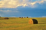 Hay bales in farm field with approaching storm, near Fort Totten, Benson County, North Dakota, AGPix_0284