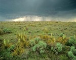 Thunderstorm over Great Plains in the Comanche National Grasslands, Baca County, southeast Colorado, AGPix_0294