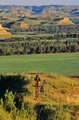 Mountain biking on Maah Daah Hey Trail, near Medora, North Dakota, AGPix_0325
