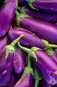 Organically Grown Eggplants, Chino Valley, Arizona, AGPix_0330