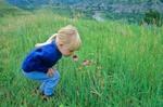 Child smelling coneflowers at Theodore Roosevelt National Park, North Unit, North Dakota, AGPix_0372