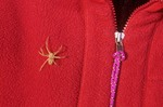 Wolf Spider crawling on hikers red jacket in Grand Wash Cliffs Wilderness Area, Grand Canyon-Parashant National Monument, Arizona, AGPix_0416