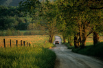 Driving a country road, Hyatt Lane in Cades Cove at Great Smoky Mountains National Park, near Townsend, Tennessee, AGPix_0452    
