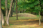 Indian mounds in forest at Effigy Mounds National Monument, Iowa, AGPix_0471