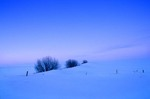 Snowy field at winter twilight in Mercer County, North Dakota, AGPix_0472