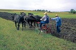 Men using horse-drawn plow to demonstrate 1900's era farming techniques at Living History Farms, near Des Moins Iowa, AGPix_0505