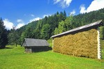 Slovenian style Hayrack, Kozolec, on farm in River Radovna Valley, Triglav National Park, west of Bled, Slovenia, AGPix_0546