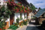 Flowers spill from flower boxes at village of Srednjavas in the Julian Alps in the Bohinj area of Slovenia, AGPix_0559