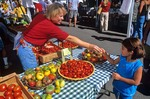Fresh tomatoes for sale at Flagstaff Farmers Market, Sunday morning, near Route 66, Flagstaff, Arizona, AGPix_0569