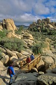 Hikers on trail in Hidden Valley area of Joshua Tree National Park, California, AGPix_0577