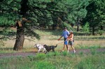 Couple walking their dogs on the Flagstaff Urban Trail System near Fort Tuthill, former lodging railroad route, Flagstaff, Arizona, AGPix_0590