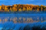 Autumn misty morning at Lake Metigoshe State Park, near Bottineau, North Dakota, AGPix_0594