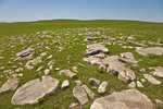 Limestone rocks exposed on surface shows shallow soils at Tallgrass Prairie National Preserve in the Flint Hills near Strong City Kansas, AGPix_0603