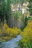 Spearfish Canyon in Black Hills National Forest, south of Spearfish, South Dakota, AGPix_0644
