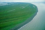 Aerial view of shoreline at Cape Krusenstern National Monument, beach ridges contain important archaeological sites on shore of Chuckchi Sea, Alaska, AGPix_0711