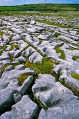The Burren, a landscape of Karst Topography, eroded limestone in County Clare, Republic of Ireland, AGPix_0858