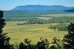 View of Escudilla Mountain from Su Knolls Area near Big Lake, Apache National Forest, White Mountains,  southwest of Nutrioso, Arizona, AGPix_0898