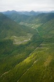 Aerial view of forest and mountains with logging roads and clearcuts along east side of Moresby Island in the Queen Charlotte Islands of British Columbia, Canada, AGPix_0927