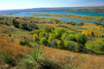 Missouri River below Fort Randall Dam, autumn colors and yucca, south of Pickstown, South Dakota, AGPix_1043