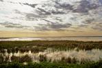 Wetland at Cheyenne Bottoms Wildlife Area near Big Bend, Kansas, KS_00497, AGPix_1079.tif