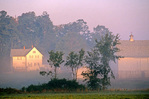 White farm house and barn with early morning fog, near Athens, Wisconsin, WI_00238, AGPix_1095