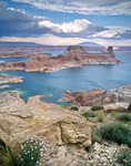 Lake Powell viewed from Romana Mesa above Gunsight Butte, Glen Canyon National Recreation Area, Utah, AGPix_1114