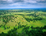 Prairies and pine forest of the Black Hills viewed from Rankin Ridge in Wind Cave National Park, South Dakota, AGPix_1122
