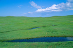 Green prairie with stream, June on the Great Plains near Crawford, Nebraska, AGPix_1129