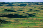 Nebraska Sand Hills at Samuel Mc Kelvie National Forest, near Valentine, Nebraska, AGPix_1134