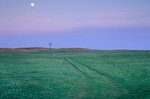 Moonrise over prairie windmill in the Sand Hill Country near Nenzel, Nebraska, AGPix_1136