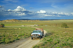 Dr. Adrienne Ruby, mobil veterinarian, drives her pickup from Navajo home of Evelyn Lewis near community of Hardrock on the Navajo Indian Nation, Arizona, AGPix_1159