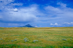 Lone Butte a part of Sweet Grass Hills, rising above the Great Plains near Whitlash, Montana, AGPix_1185