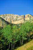 Deseret Peak in Stansbury Mountains, aspen in Mill Fork area of Wasatch National Forest, Utah, AGPix_1217 