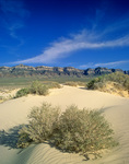Sand dunes in the Tule Valley with western wall of the House Range in distance, BLM lands, in western Utah, AGPix_1225