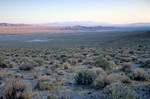 Tule Valley at sunrise, Great Basin Desert, on west side of House Range in the West Desert of western, Utah, AGPix_1229