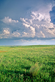 Storm clouds build over the prairie at Grand River National Grassland, southwest of Lemmon, South Dakota, AgPix_1413
