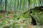 Hermit's cave in forest of beech trees, below Mount Penna, at Franciscan Sanctuary of La Verna, in Casentine Forest National Park, Tuscany, Italy, IT_3142, AgPix_1462