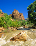 Virgin River in Zion Canyon, during spring runoff at Zion National Park, Utah, UT_01665, AgPix_1467
