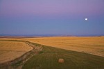 Moonrise over the grain fields of the Camas Prairie near Ferdinand, Nez Perce Reservation, Idaho, _MG_37203, AGPix_1484