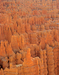 Rock spires of Silent City, view near Sunset Point at Bryce Canyon National Park, Utah, UT_02977, AGPix_1519