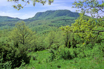 Mount Penna, site of La Verna Sanctuary, in Casentino Forest National Park, Tuscany, Italy, IT_01678, AGPix_1558