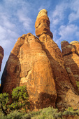 Sandstone pinnacle at Cheslet Park, sunset at Canyonlands National Park, Utah, AGPix_1655