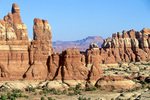 The Needles near Chesler Park with Junction Butte in background, Canyonlands National Park, Utah, AGPix_1658
