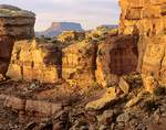 Junction Butte and sandstone walls of Big Springs Canyon in Canyonlands National Park, Utah, AGPix_1669