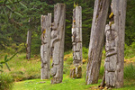 Standing poles at Ninstints a historic Haida village on Anthony Island, Sgaang Gwaii, in Gwaii Haanas National Park Reserve, in the Queen Charlotte Islands of British Columbia, Canada, _MG_19849, AGPix_1680