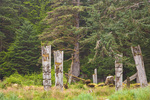 Standing poles at Ninstints a historic Haida village on Anthony Island, Sgaang Gwaii, in Gwaii Haanas National Park Reserve, in the Queen Charlotte Islands of British Columbia, Canada, _MG_19863, AGPix_1681